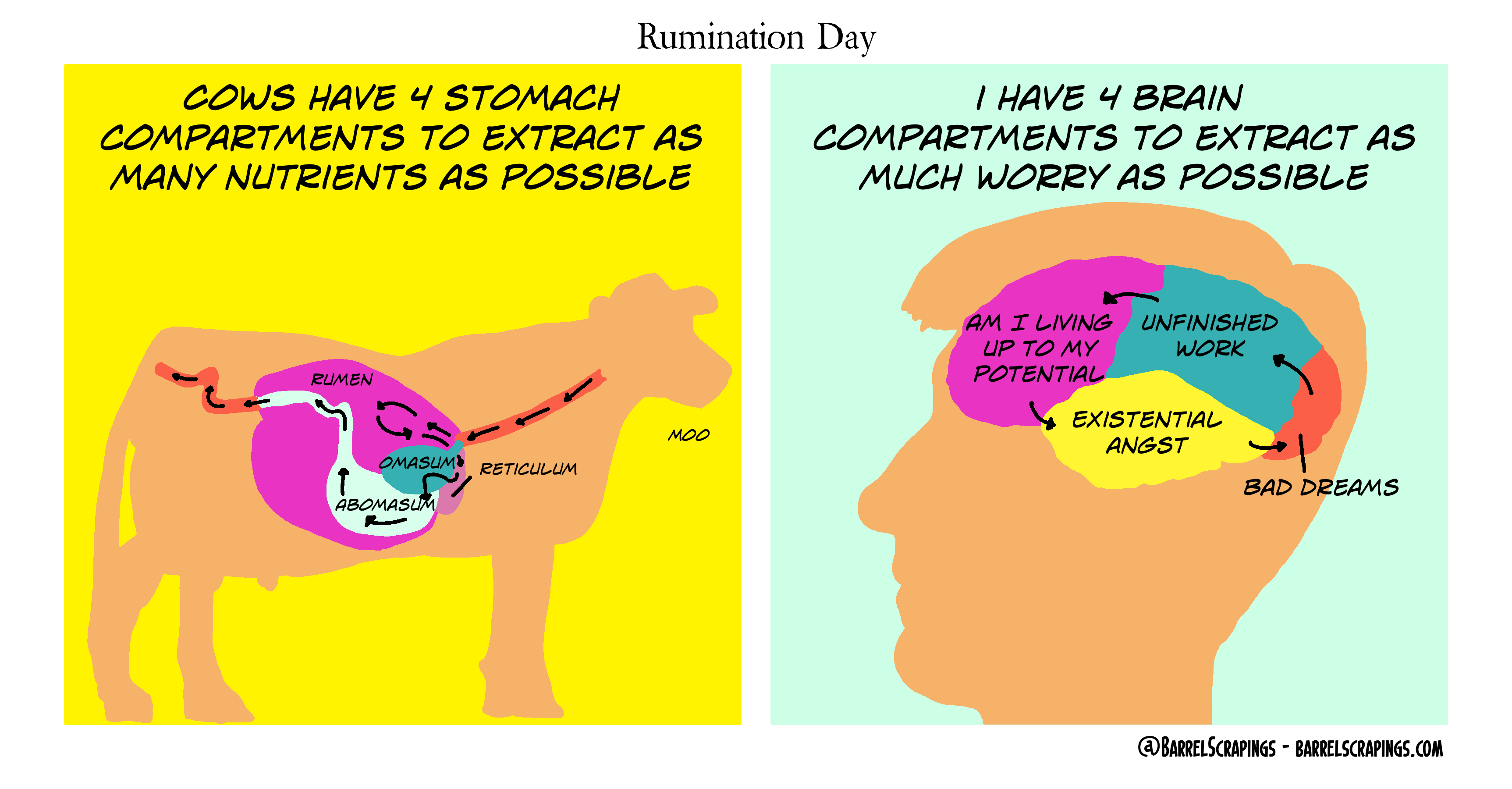 image from Rumination Day