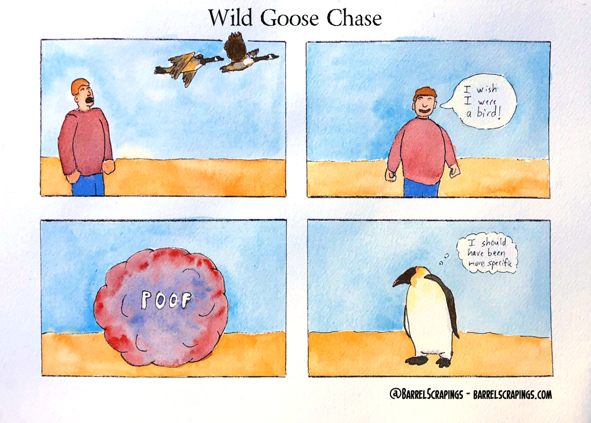 image from Wild Goose Chase