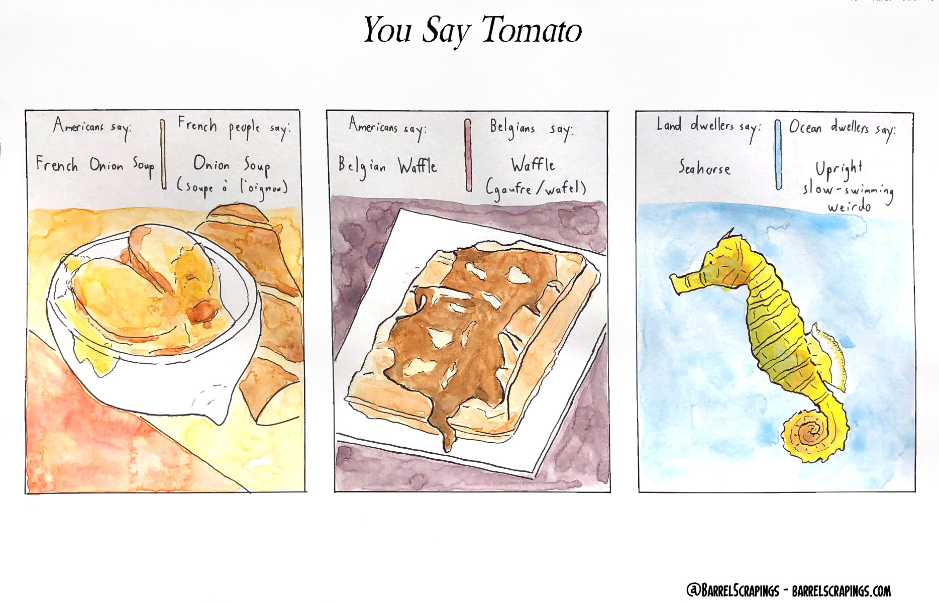 image from You Say Tomato